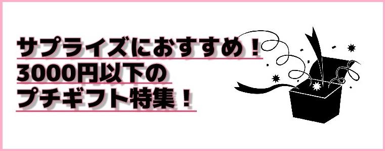 サプライズにおすすめ!3000円以下のプチギフト特集!